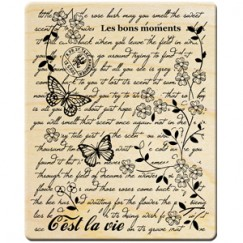 Summer bear stamp/English background/Butterfly